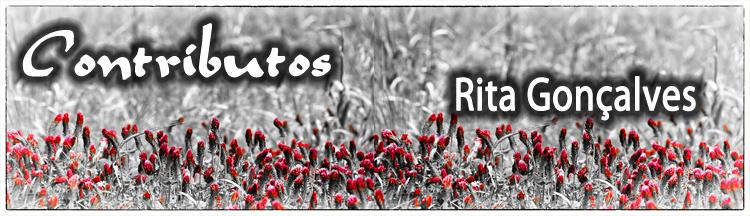 ContributosRita2014.jpg