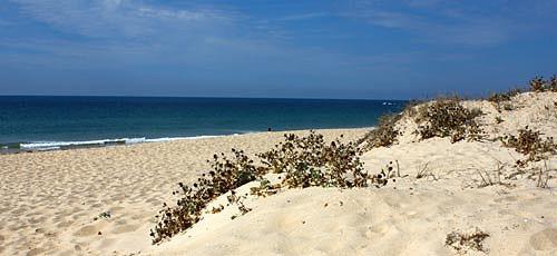 stunning-beach-faro.jpg