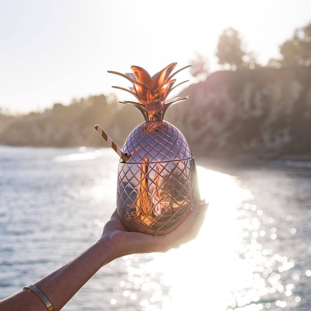 Thania_Peck_Absolut_Elyx_Copper_Pineapple_on_the_beach_1024x1024.jpg