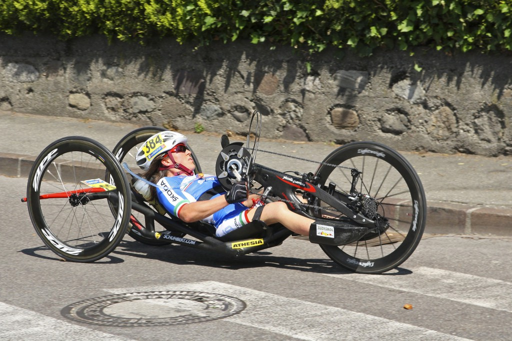 Paracycling - Mucorales.jpg