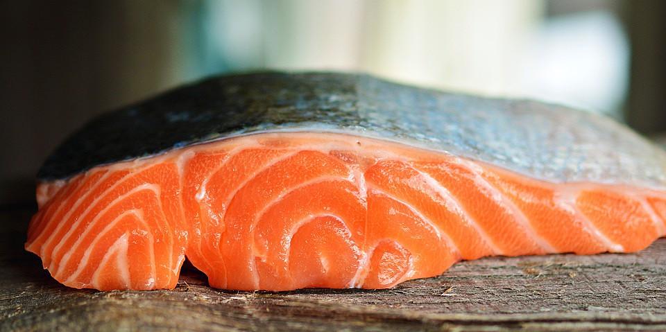 salmon-3139390_960_720.jpg