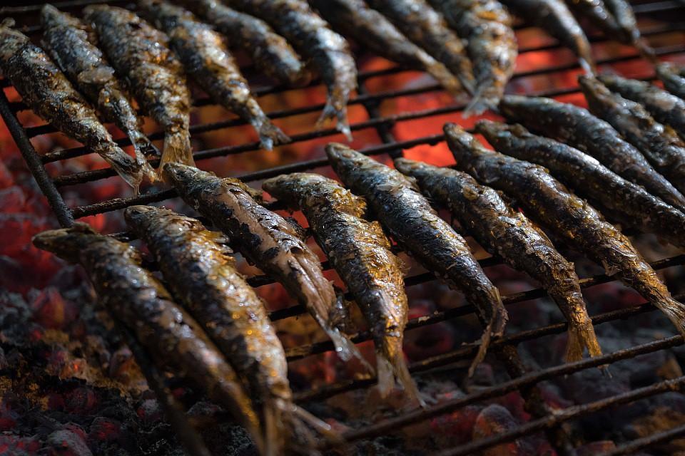 sardines-3492588_960_720.jpg