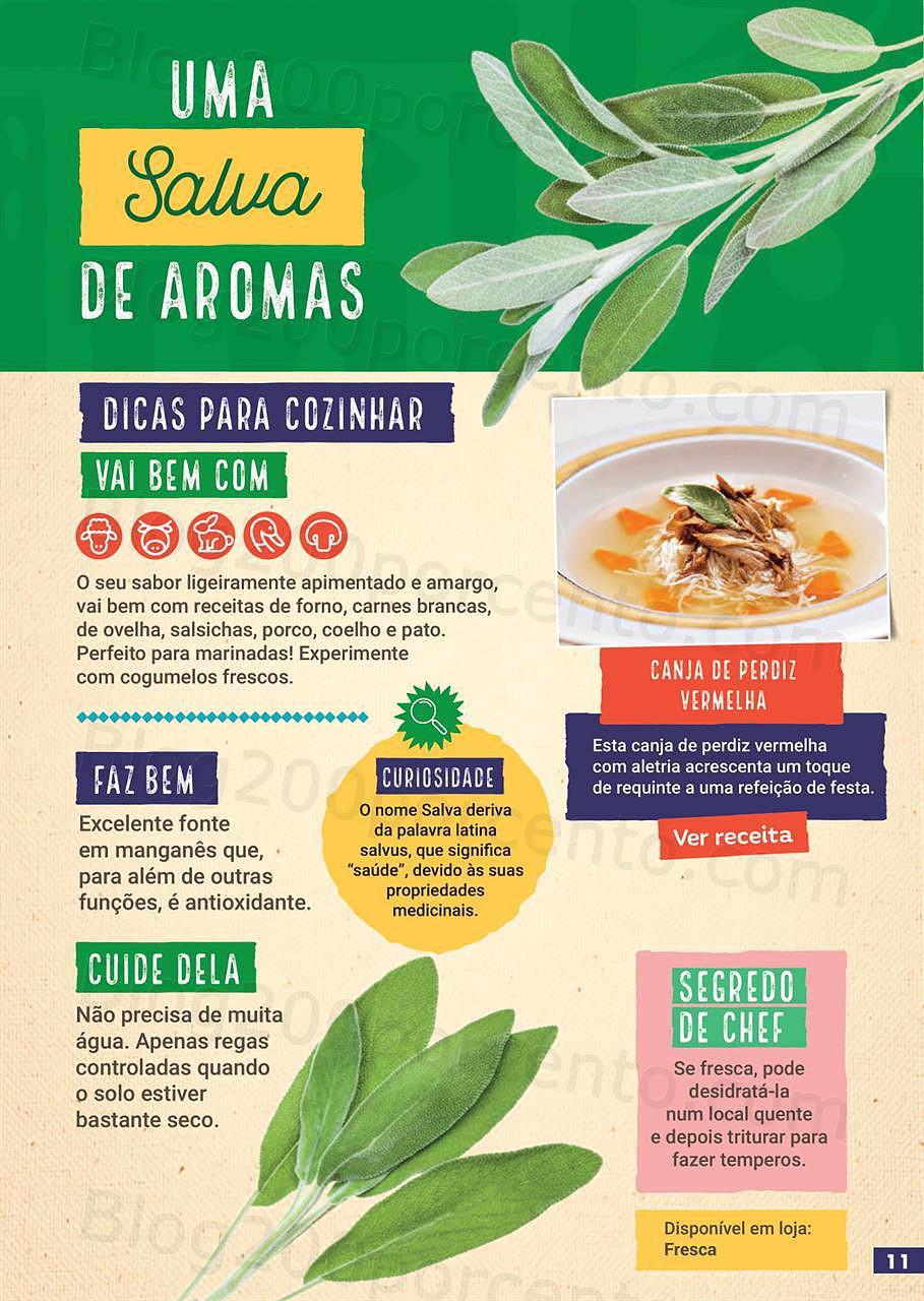guia-juliana-ervas-aromaticas-sabe-bem-11.jpg